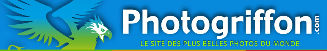 photogriffon.com, les plus belles photos du monde.
